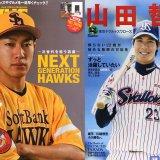 【野球】トリプルスリーって何?山田哲人と柳田悠岐について
